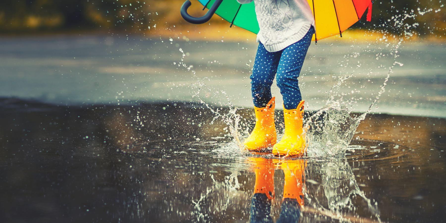 St. George Island Rainy Day Activities