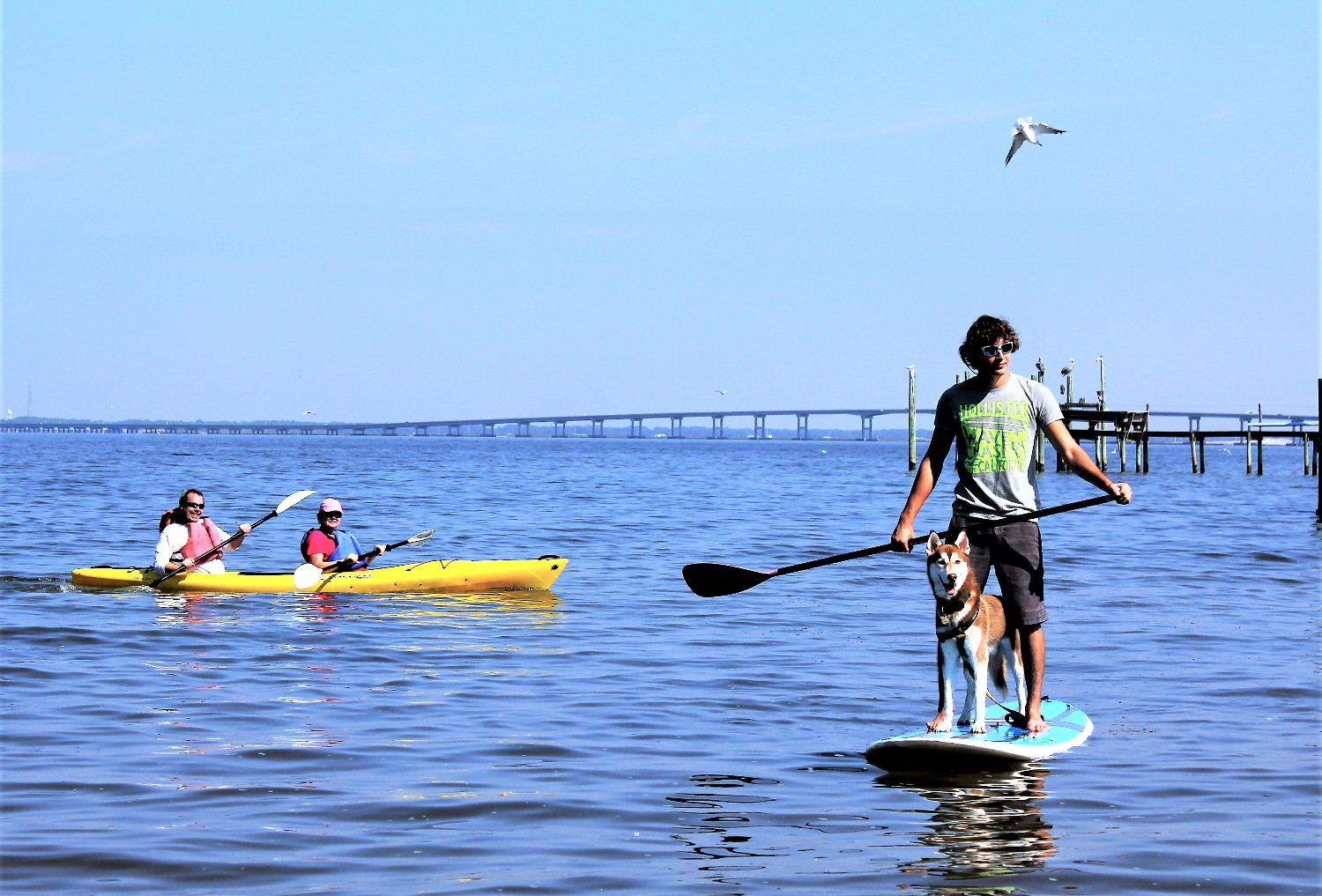 3 of the Best Places to Rent a St. George Island Paddleboard