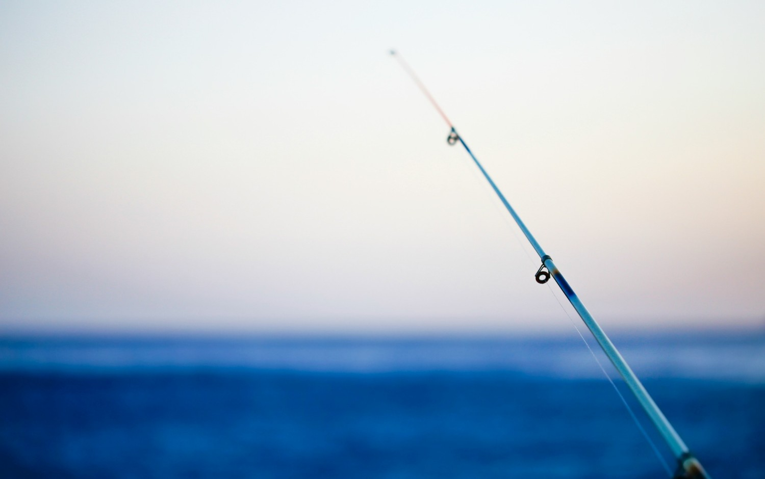 When are the best fishing times on St. George Island FL